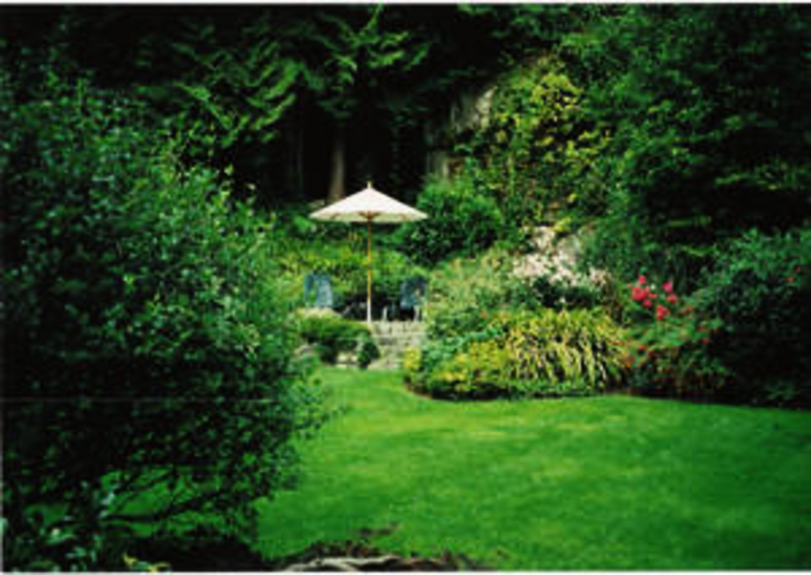 Award Winning Garden Sunny, private and level grass yard