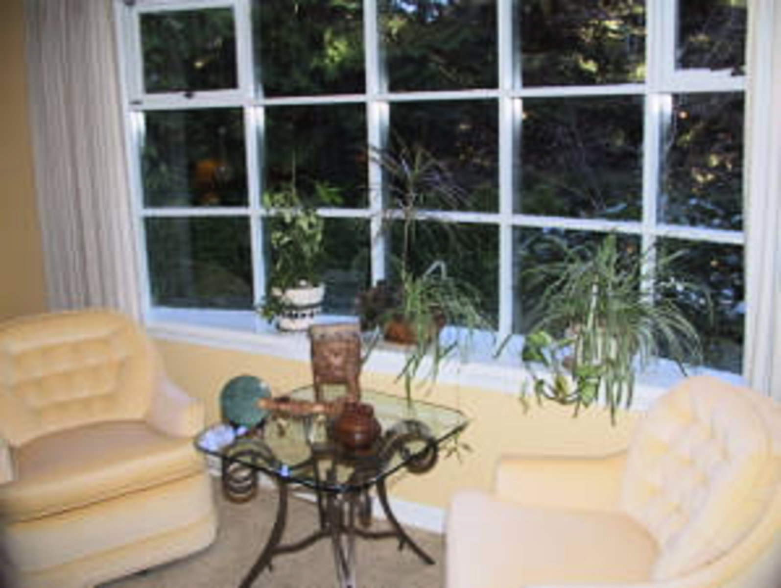 Living Room Bay Window
