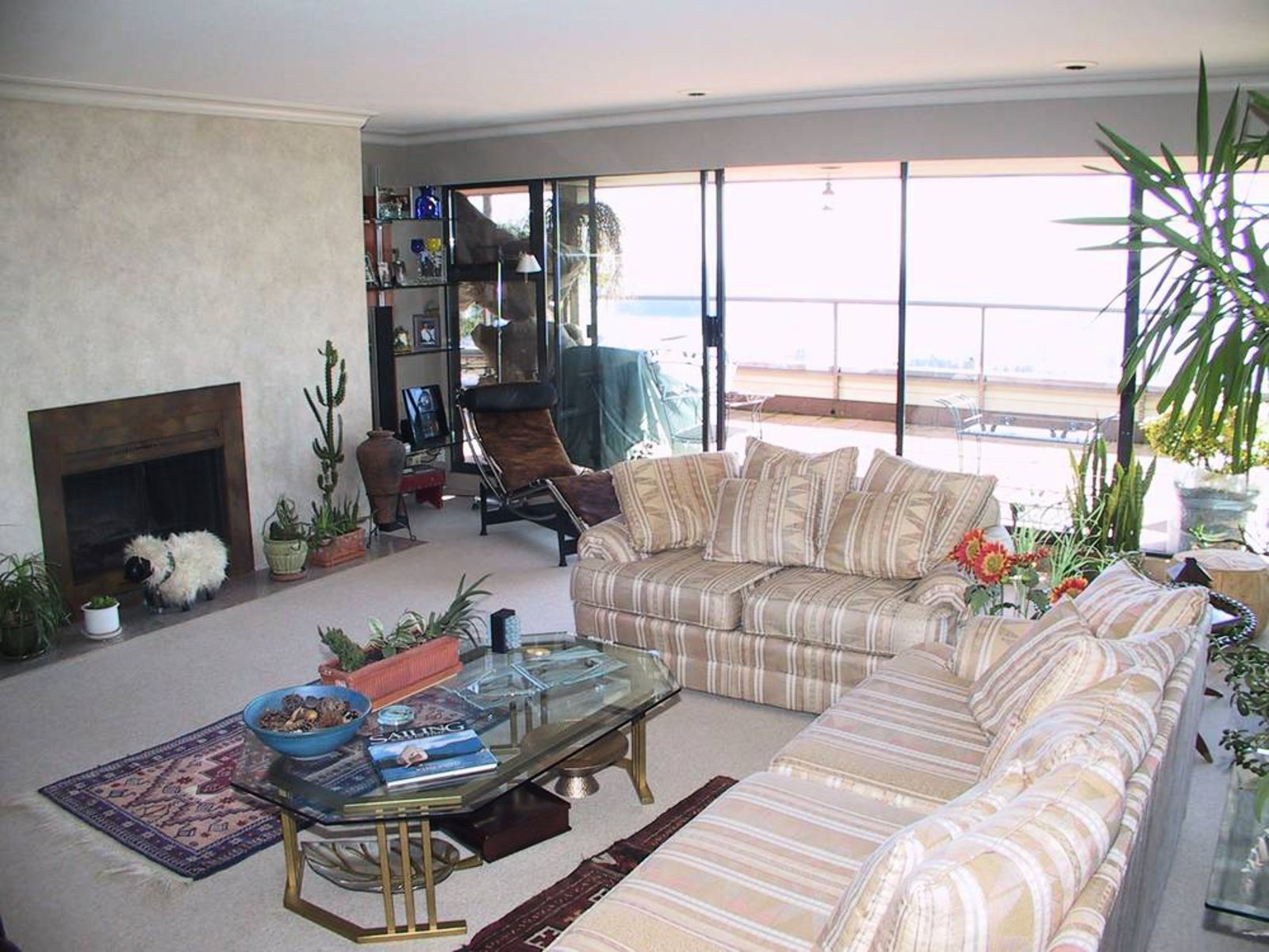 Living Room Wood burning fireplace and floor to ceiling glass (south and west walls)