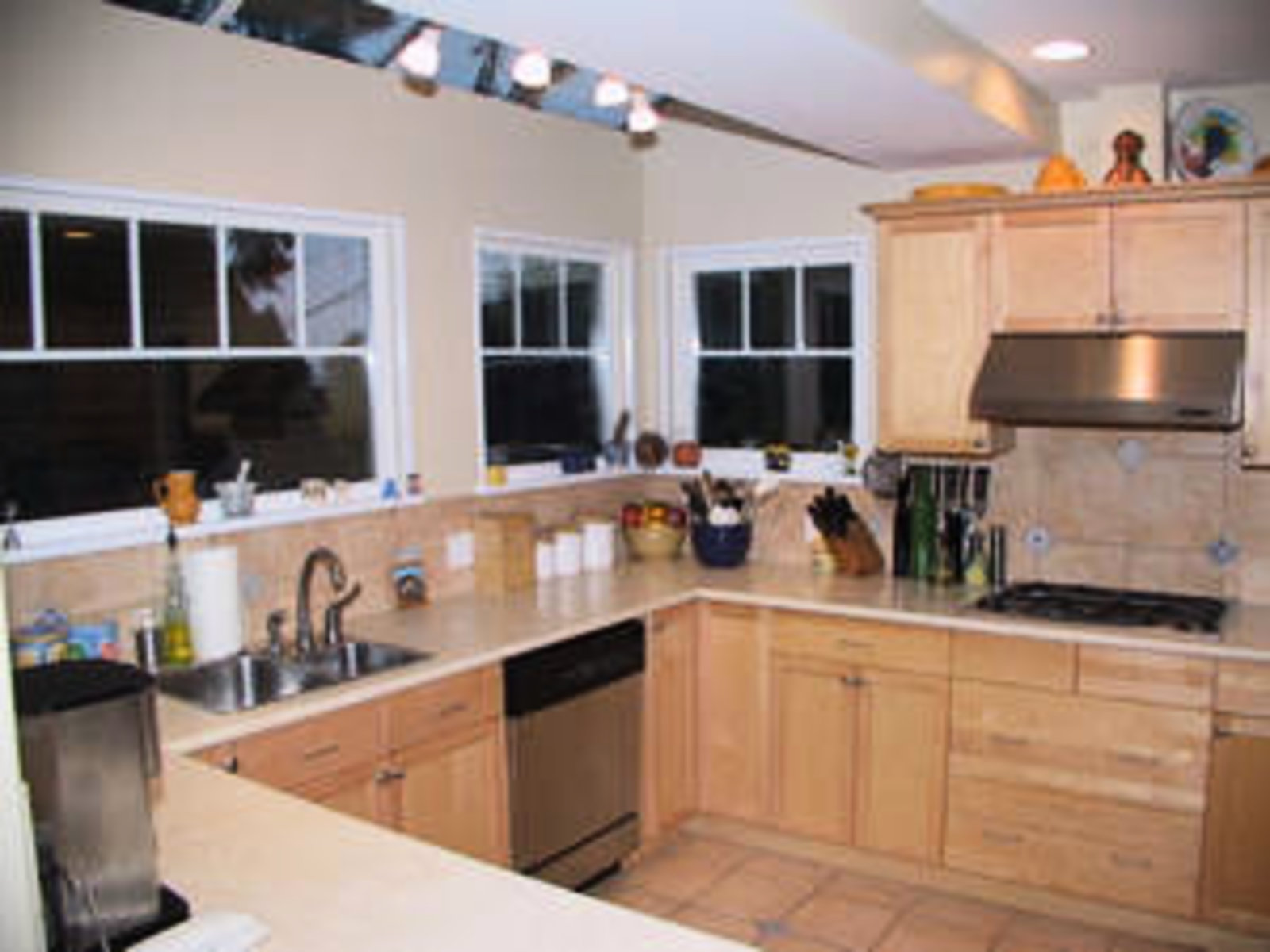 Kitchen Stainless steel appliances, skylights