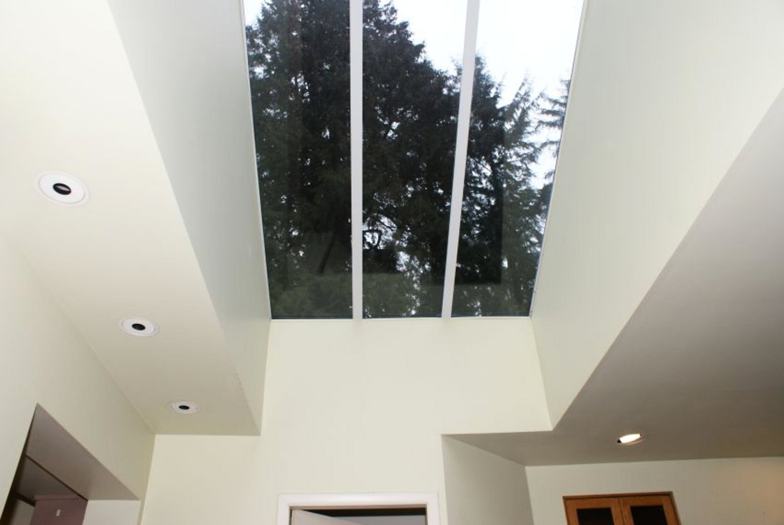 Family Room Skylight