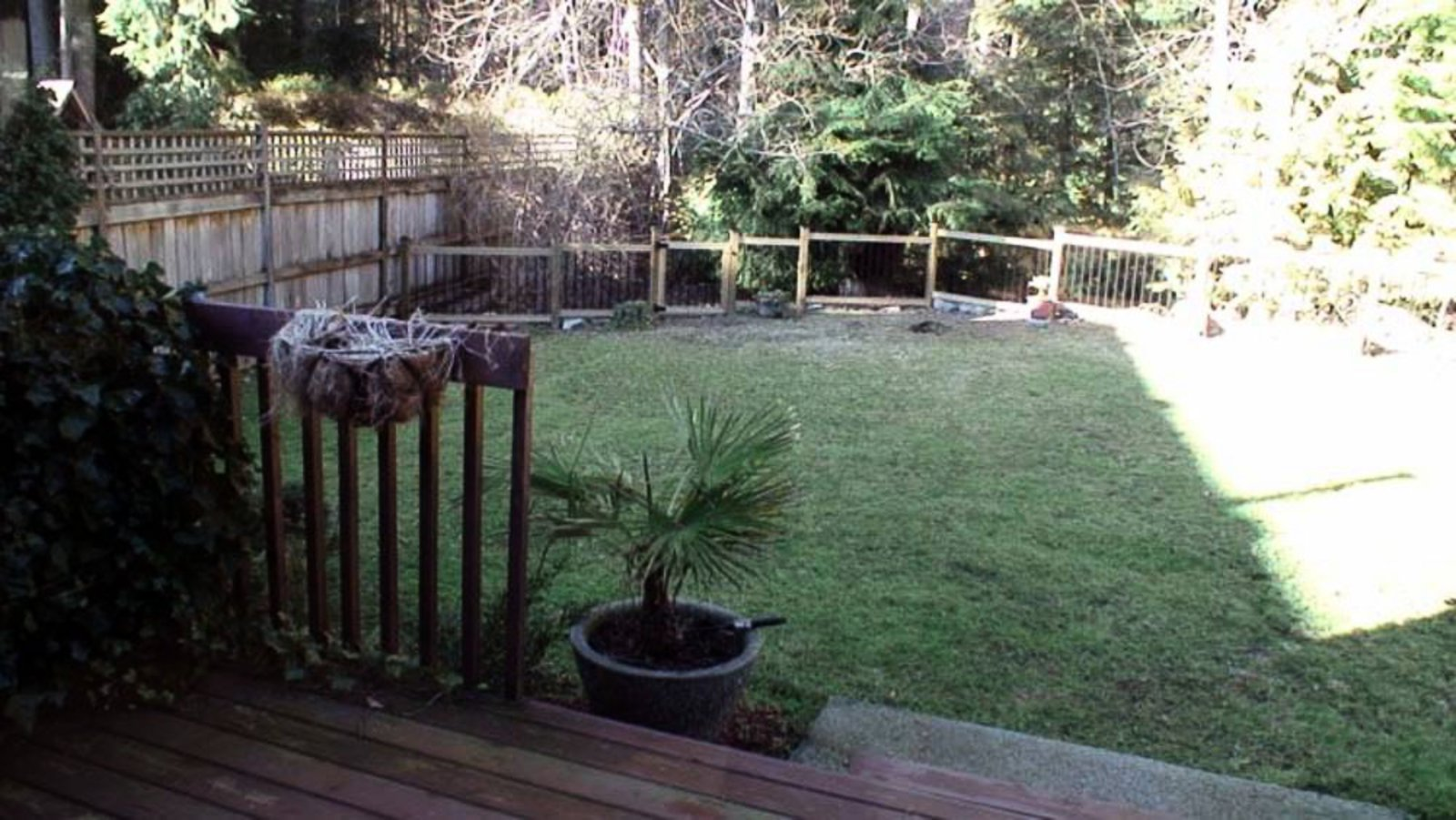 Level Fenced Yard