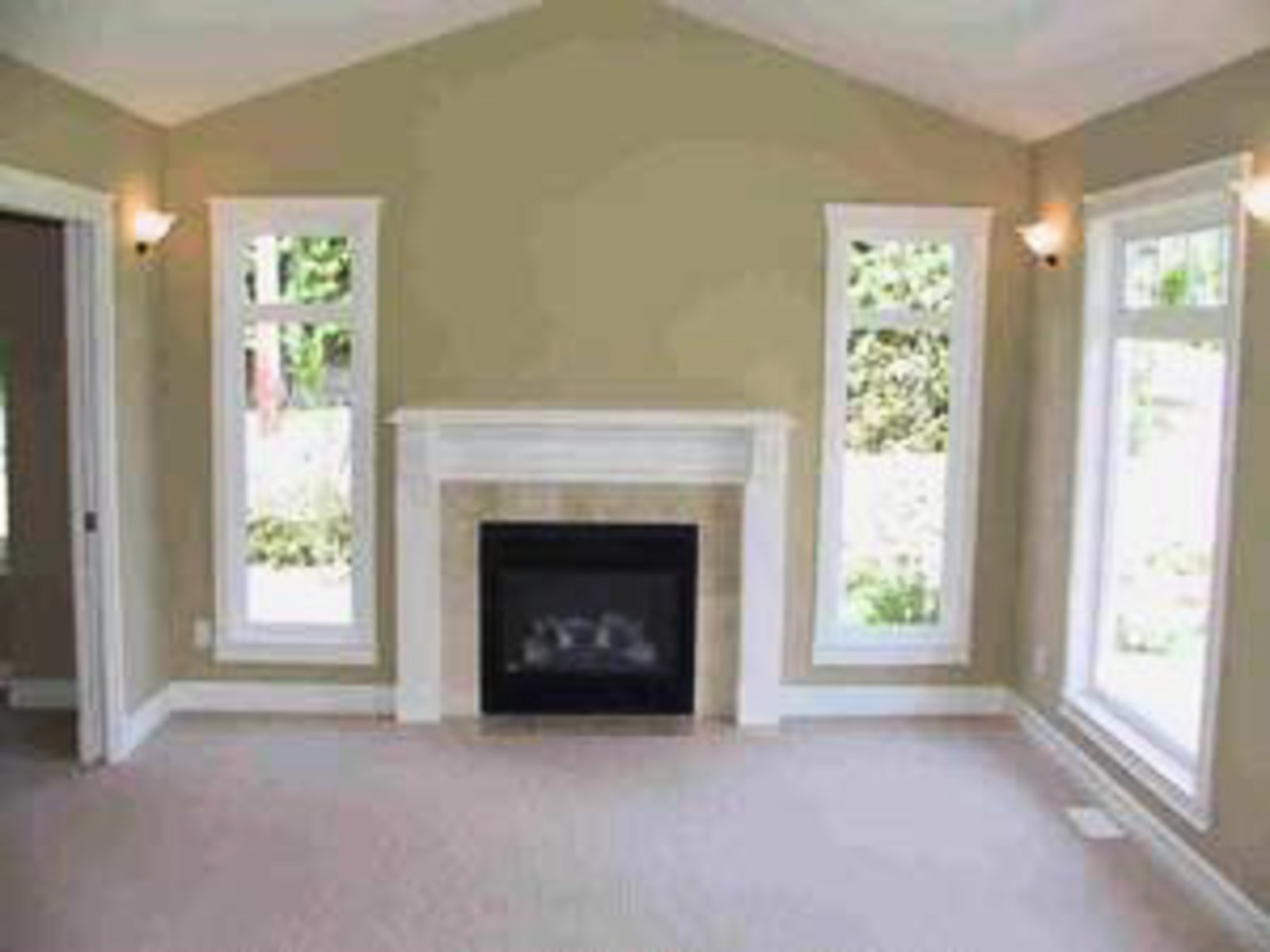 Living Room Vaulted ceiling and gas fireplace